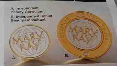 MaryKay IBC_ISC_pins